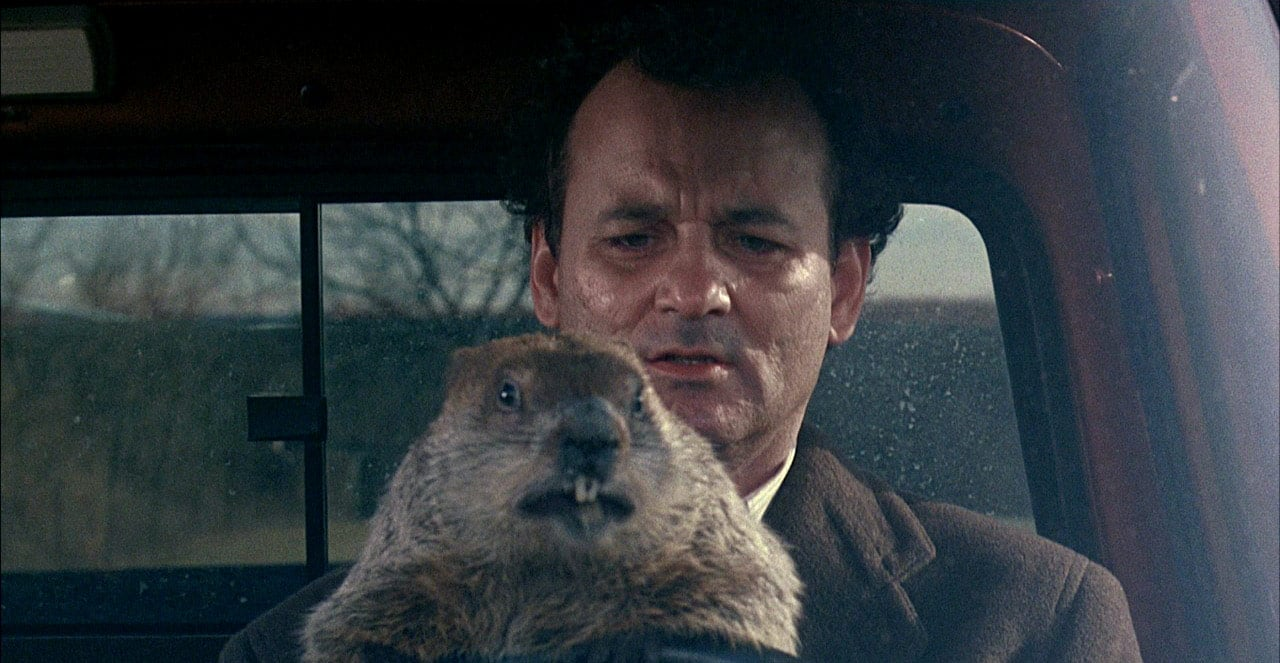 time travel tort law time loops Groundhog Day