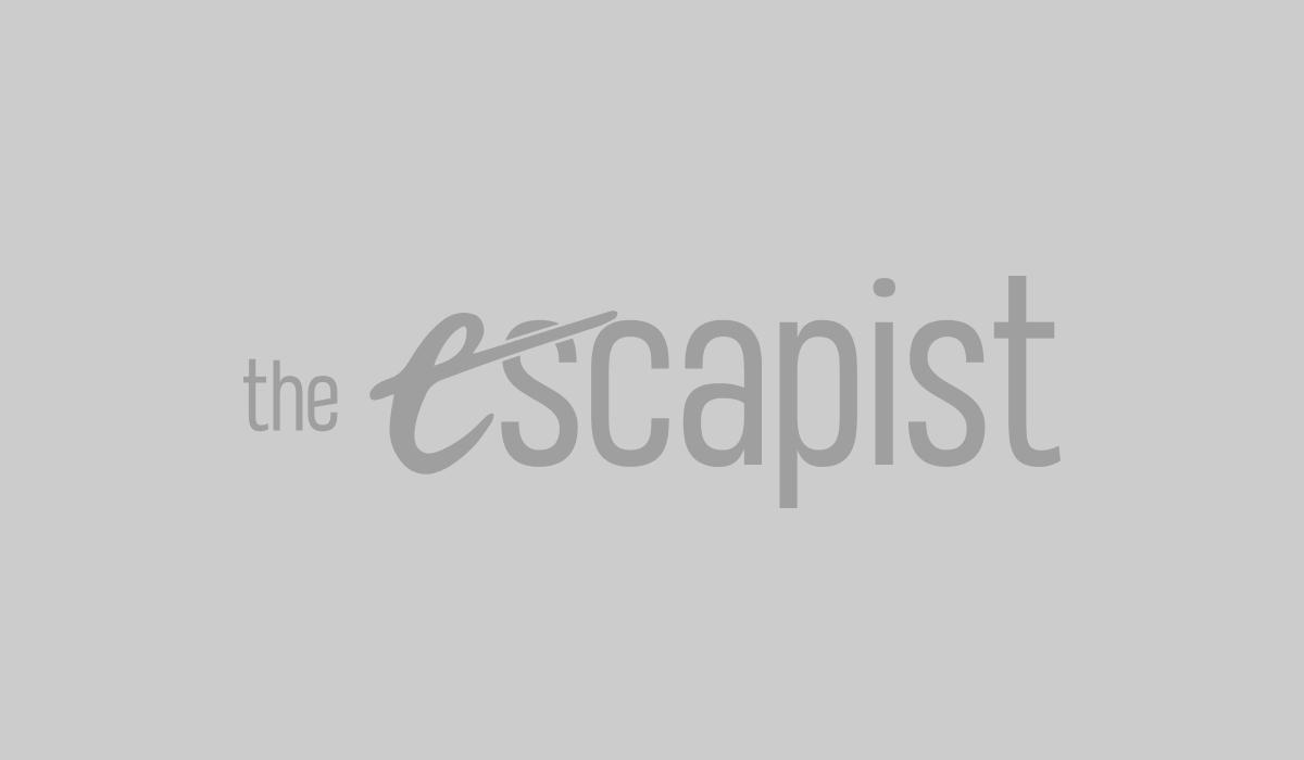 The Karate Kid Movies Explore Hollywood Complicated Martial Arts History The Karate Kid Part II Part III Cobra Kai